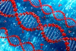 Red DNA on a blue background.
