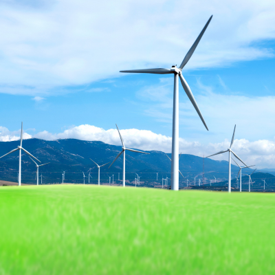 A series of windmills on a bright green field with a blue sky.